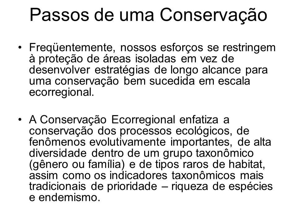 Passos de uma Conservação