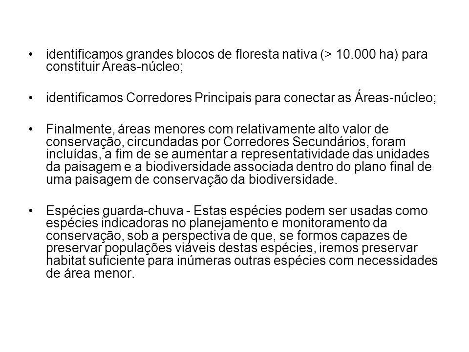 identificamos grandes blocos de floresta nativa (> 10
