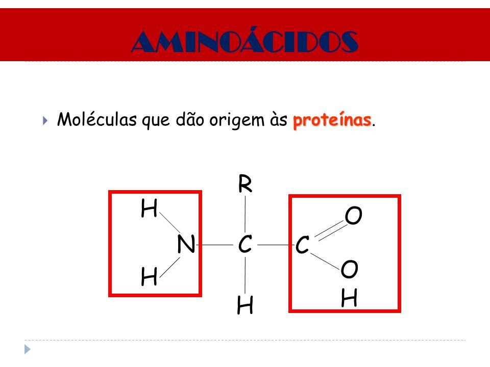 AMINOÁCIDOS Moléculas que dão origem às proteínas. R H O N C C OH H H