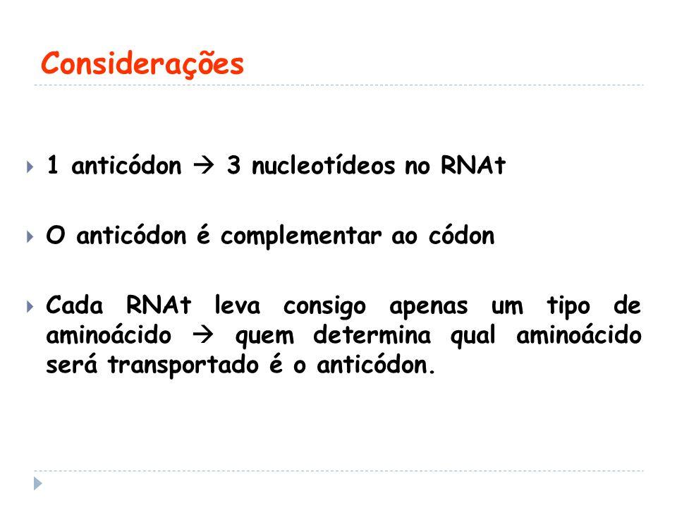 Considerações 1 anticódon  3 nucleotídeos no RNAt