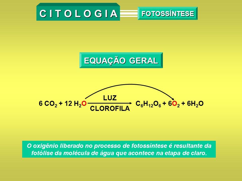 C I T O L O G I A EQUAÇÃO GERAL FOTOSSÍNTESE LUZ CLOROFILA