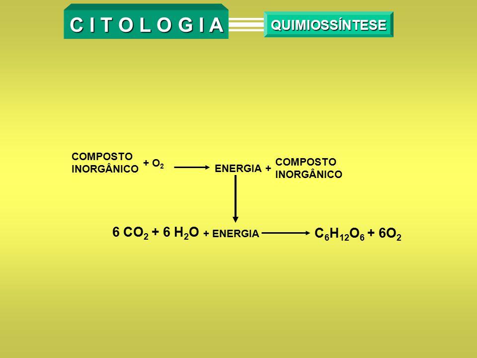 C I T O L O G I A QUIMIOSSÍNTESE 6 CO2 + 6 H2O C6H12O6 + 6O2