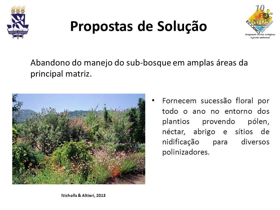 Propostas de Solução Abandono do manejo do sub-bosque em amplas áreas da principal matriz.