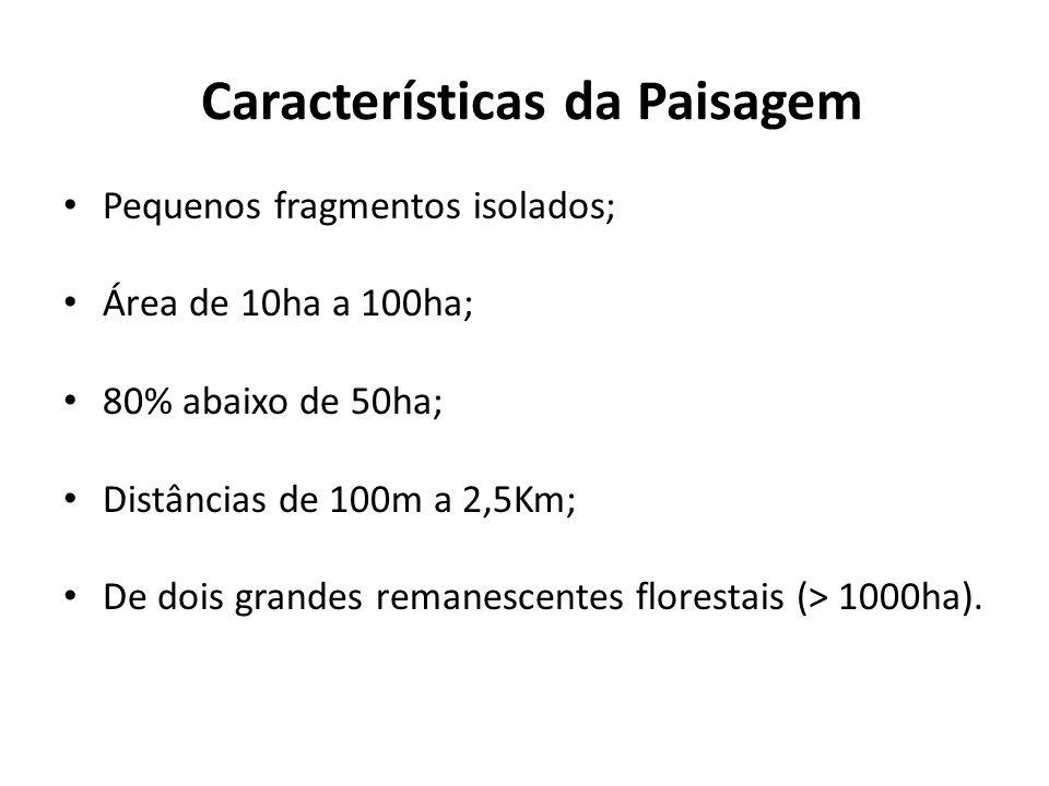 Características da Paisagem
