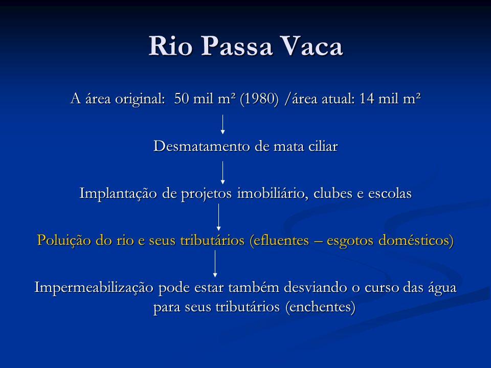 Rio Passa Vaca A área original: 50 mil m² (1980) /área atual: 14 mil m². Desmatamento de mata ciliar.