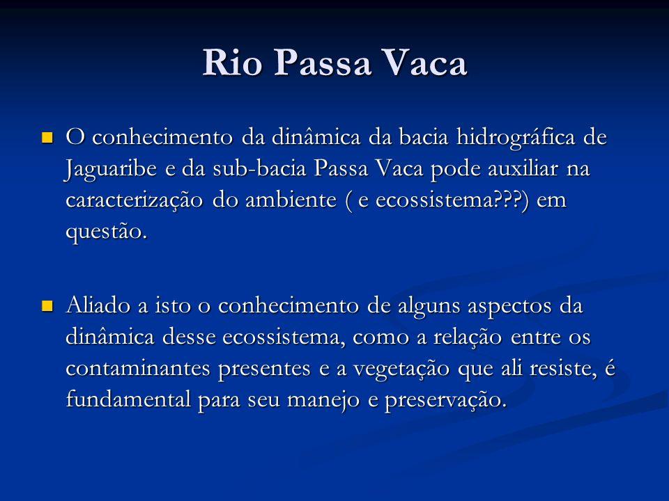 Rio Passa Vaca