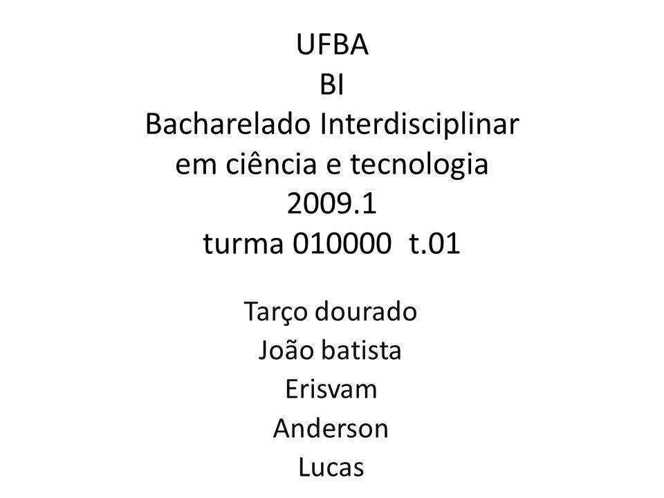 Tarço dourado João batista Erisvam Anderson Lucas