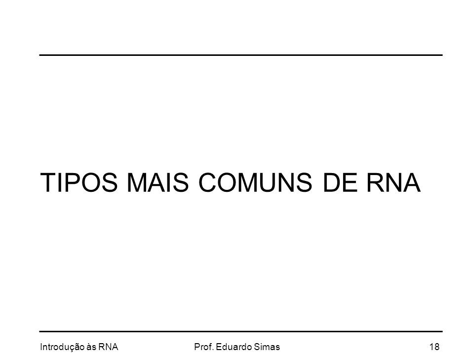 TIPOS MAIS COMUNS DE RNA