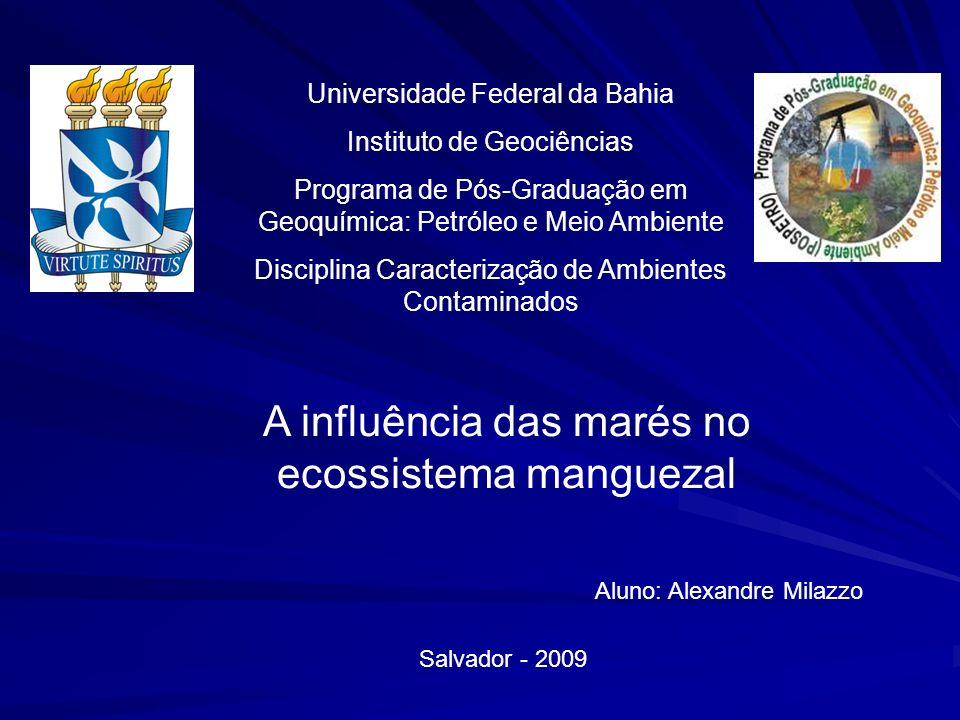 A influência das marés no ecossistema manguezal