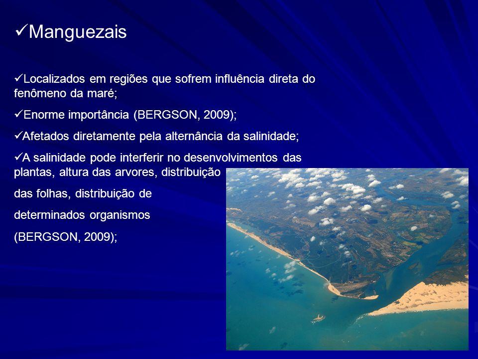 Manguezais Localizados em regiões que sofrem influência direta do fenômeno da maré; Enorme importância (BERGSON, 2009);