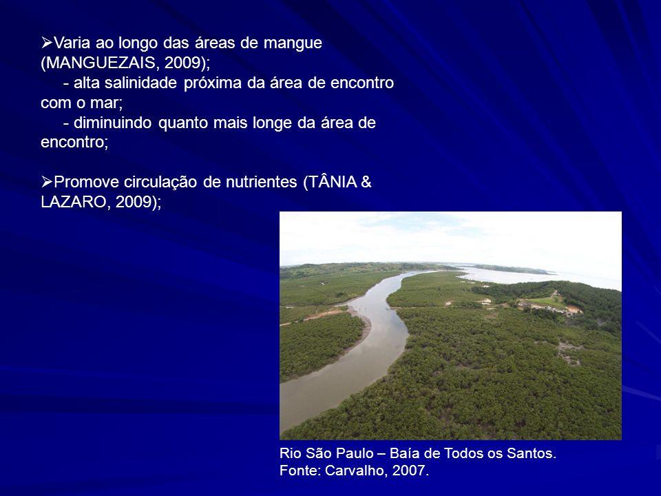 Varia ao longo das áreas de mangue (MANGUEZAIS, 2009);