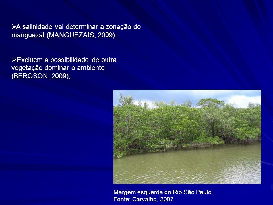 A salinidade vai determinar a zonação do manguezal (MANGUEZAIS, 2009);