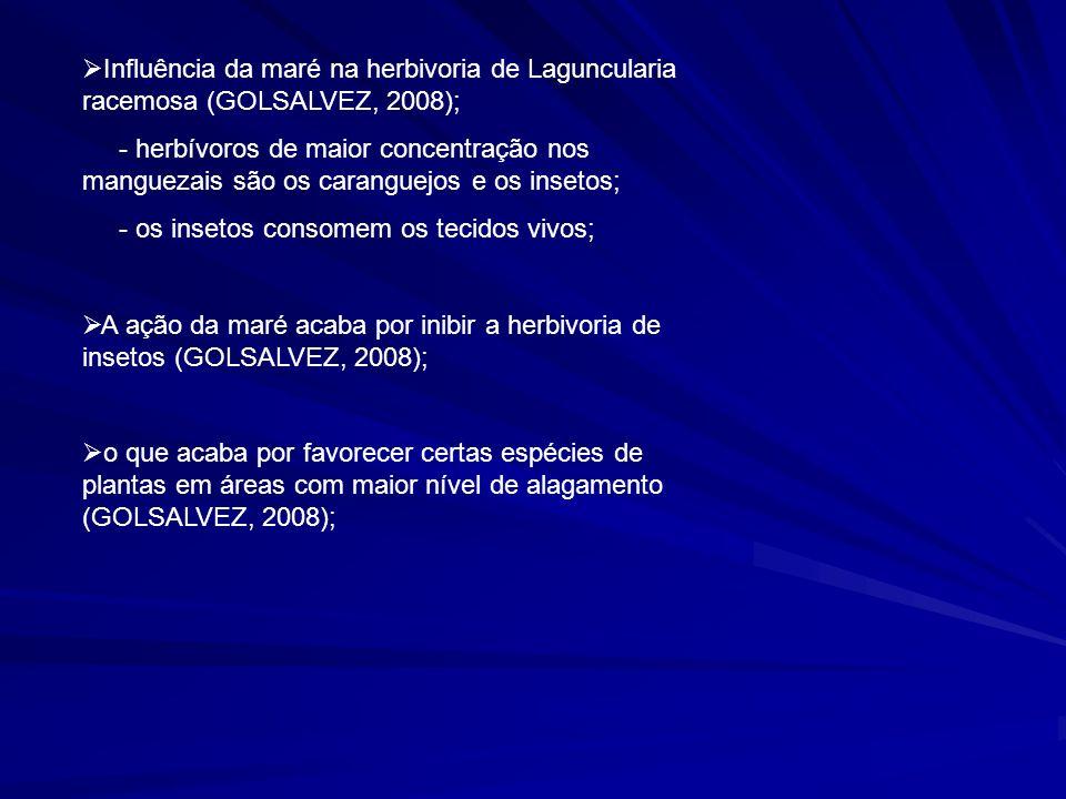 Influência da maré na herbivoria de Laguncularia racemosa (GOLSALVEZ, 2008);