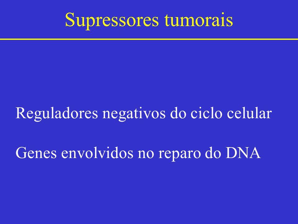 Supressores tumorais Reguladores negativos do ciclo celular