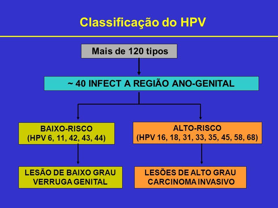~ 40 INFECT A REGIÃO ANO-GENITAL
