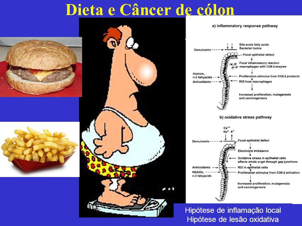 Dieta e Câncer de cólon Hipótese de inflamação local