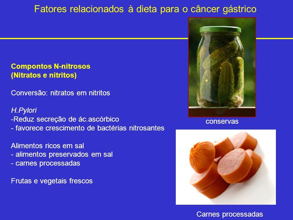 Fatores relacionados à dieta para o câncer gástrico