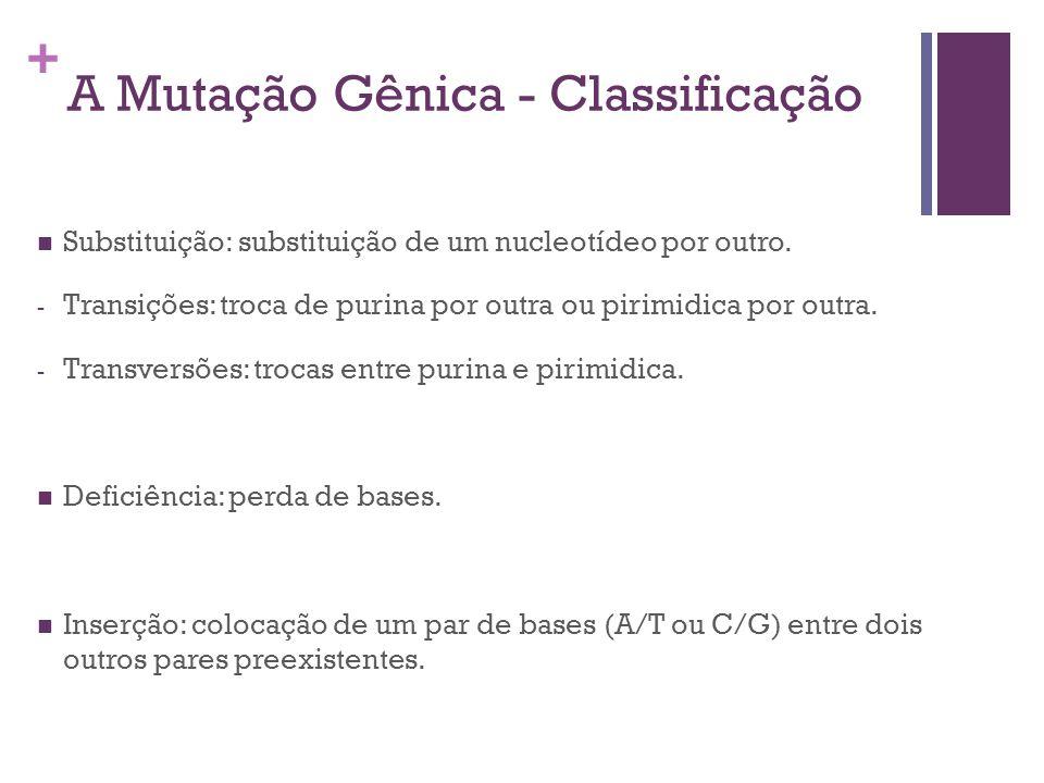 A Mutação Gênica - Classificação