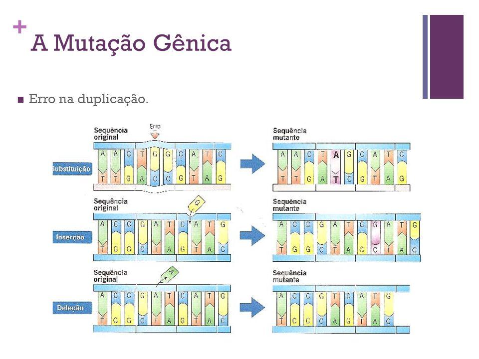 A Mutação Gênica Erro na duplicação.