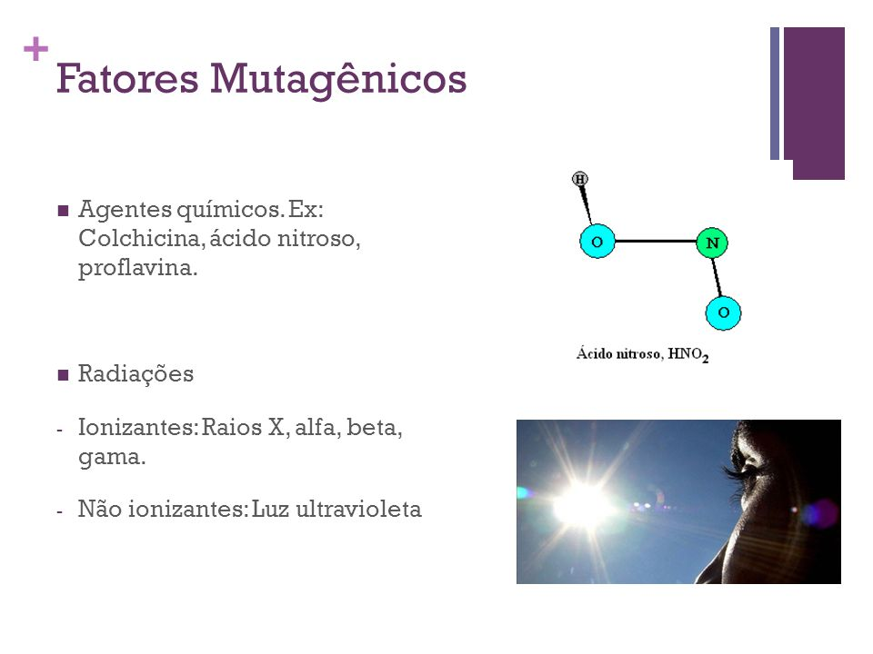 Fatores Mutagênicos Agentes químicos. Ex: Colchicina, ácido nitroso, proflavina. Radiações. Ionizantes: Raios X, alfa, beta, gama.