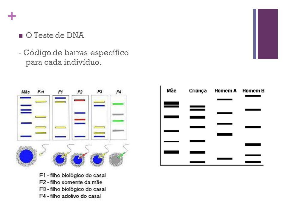 O Teste de DNA - Código de barras específico para cada indivíduo.