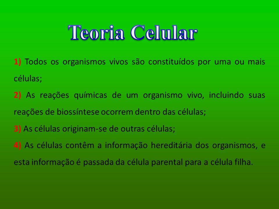Teoria Celular 1) Todos os organismos vivos são constituídos por uma ou mais células;