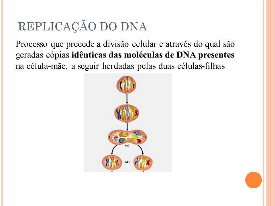 REPLICAÇÃO DO DNA Processo que precede a divisão celular e através do qual são. geradas cópias idênticas das moléculas de DNA presentes.