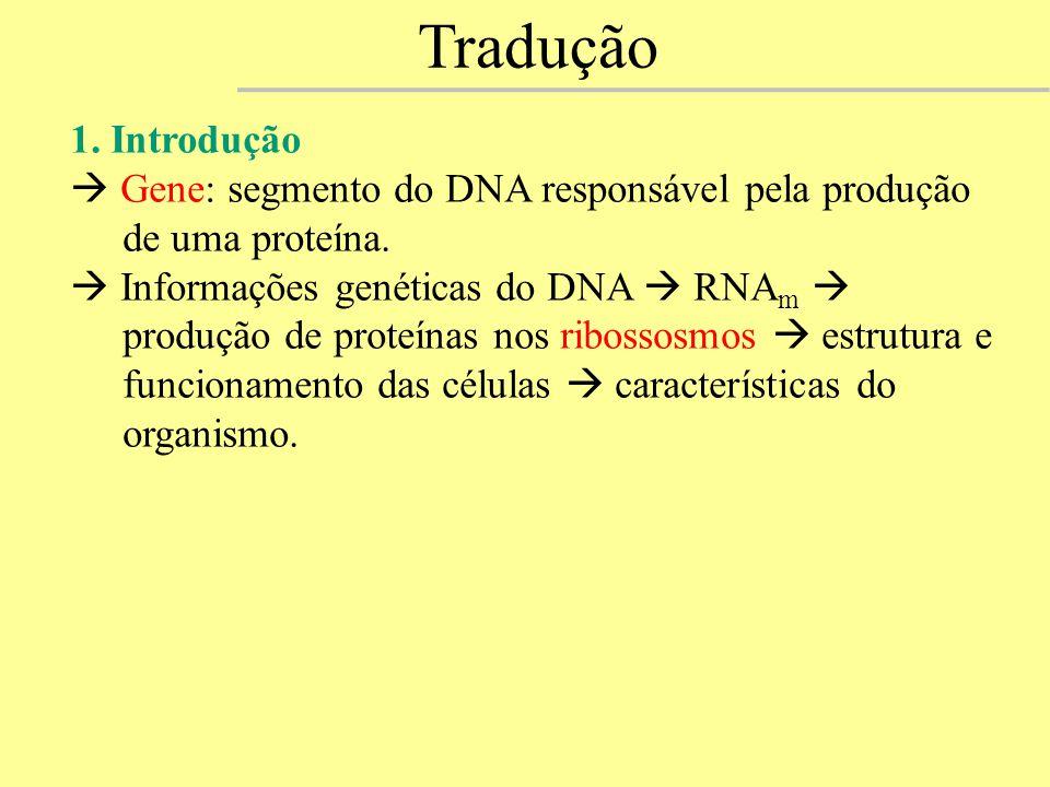 Tradução 1. Introdução.  Gene: segmento do DNA responsável pela produção de uma proteína.