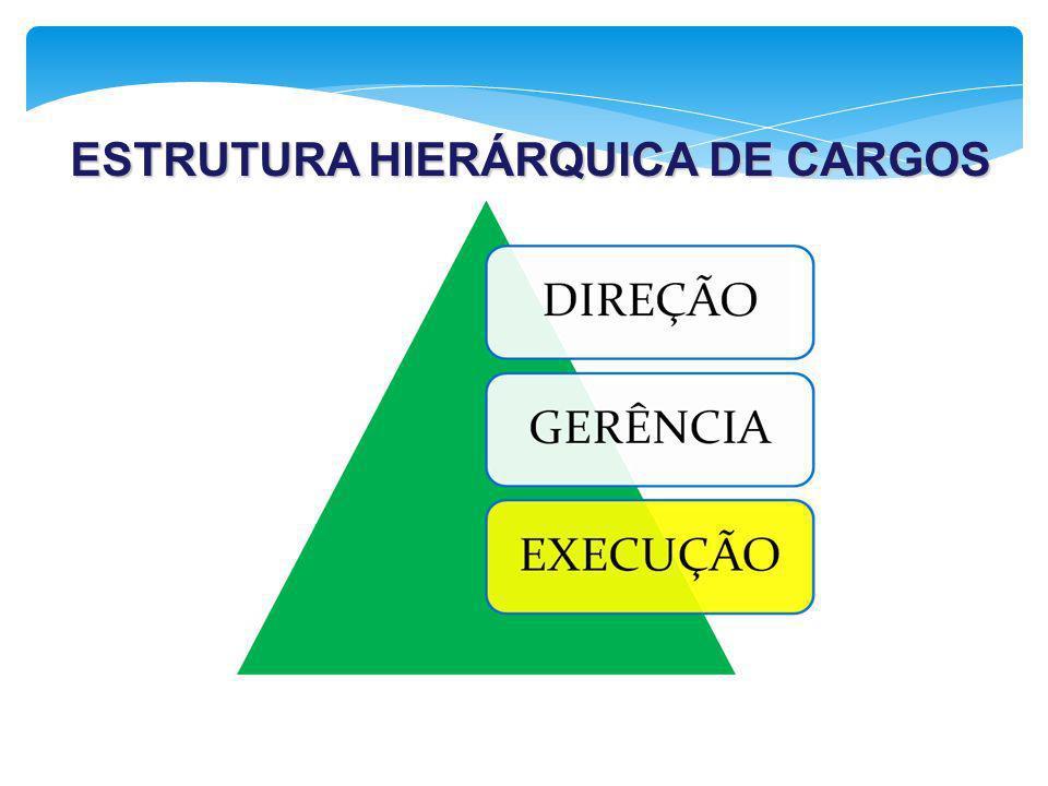 ESTRUTURA HIERÁRQUICA DE CARGOS