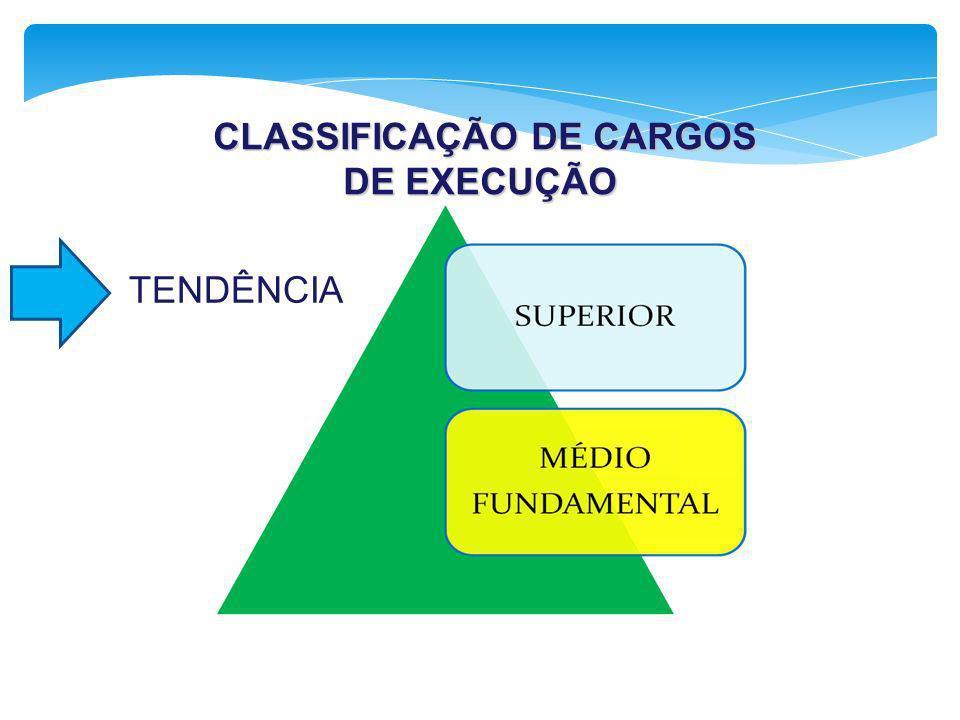 CLASSIFICAÇÃO DE CARGOS DE EXECUÇÃO