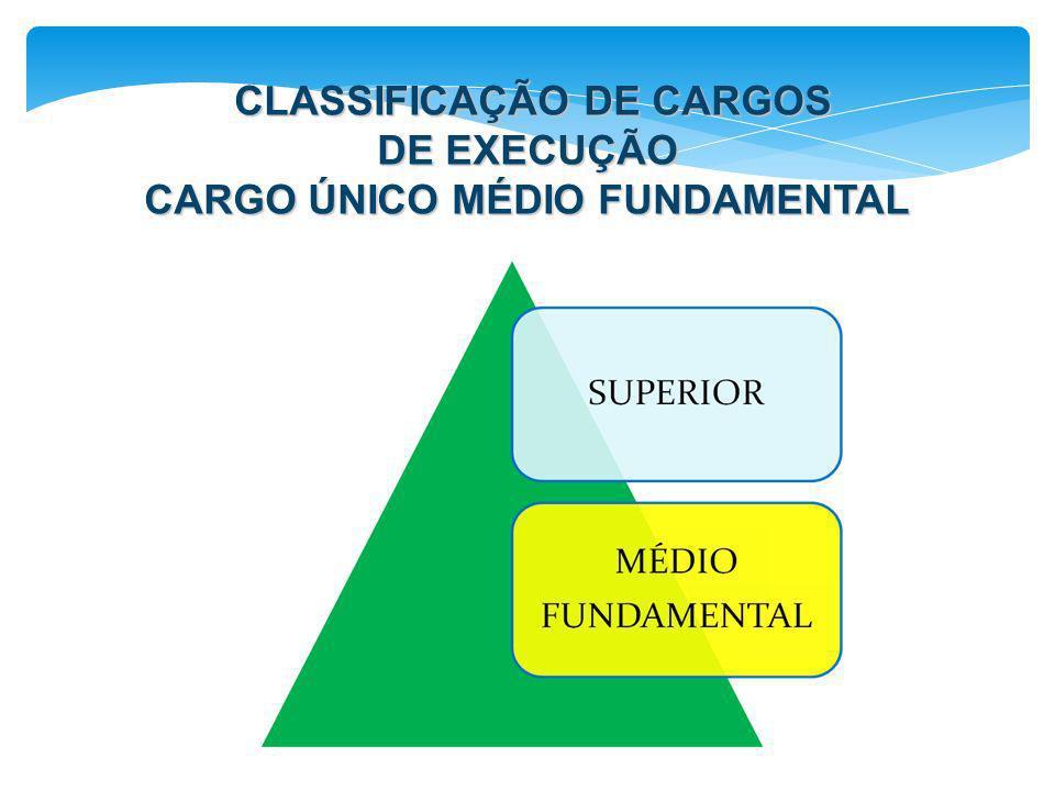 CLASSIFICAÇÃO DE CARGOS DE EXECUÇÃO CARGO ÚNICO MÉDIO FUNDAMENTAL