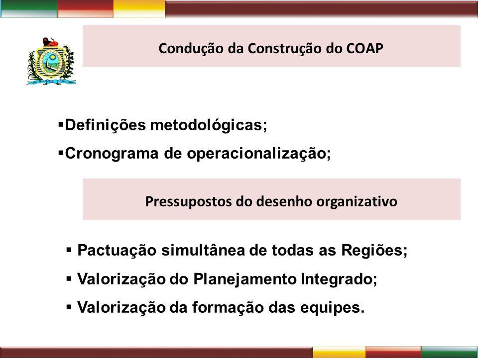 Condução da Construção do COAP Pressupostos do desenho organizativo