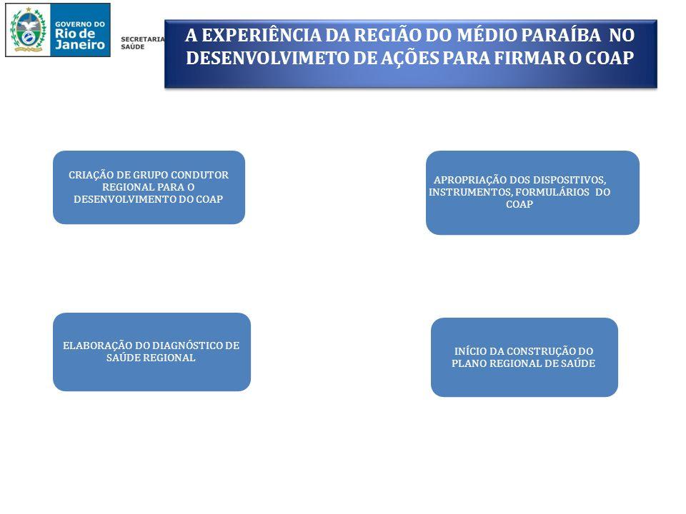 A EXPERIÊNCIA DA REGIÃO DO MÉDIO PARAÍBA NO DESENVOLVIMETO DE AÇÕES PARA FIRMAR O COAP