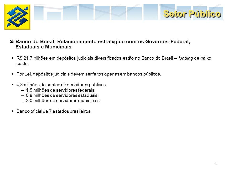 Setor Público Banco do Brasil: Relacionamento estratégico com os Governos Federal, Estaduais e Municipais.