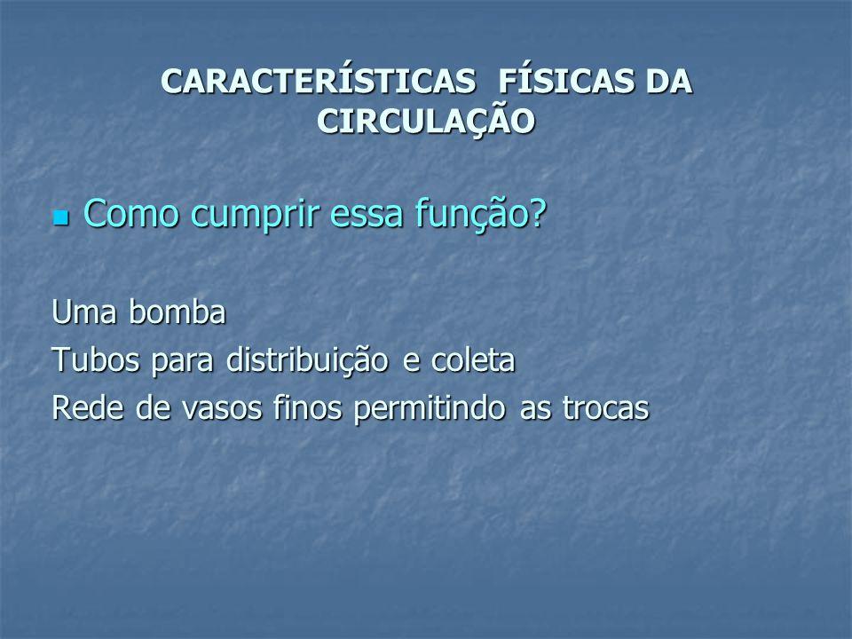 CARACTERÍSTICAS FÍSICAS DA CIRCULAÇÃO