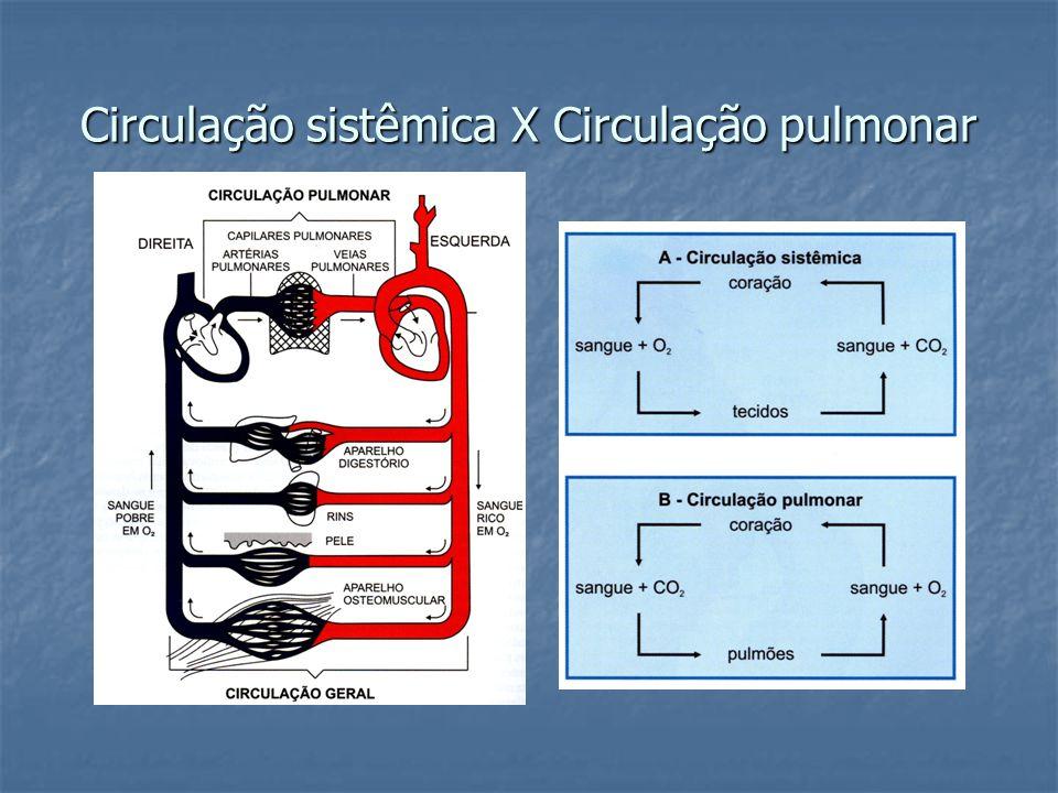 Circulação sistêmica X Circulação pulmonar