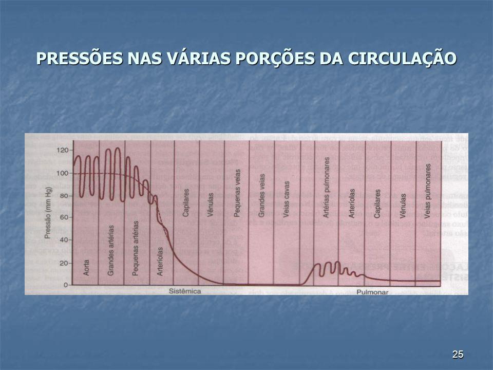 PRESSÕES NAS VÁRIAS PORÇÕES DA CIRCULAÇÃO