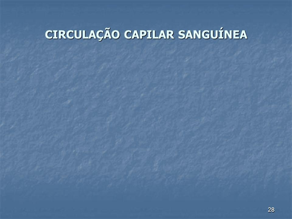 CIRCULAÇÃO CAPILAR SANGUÍNEA