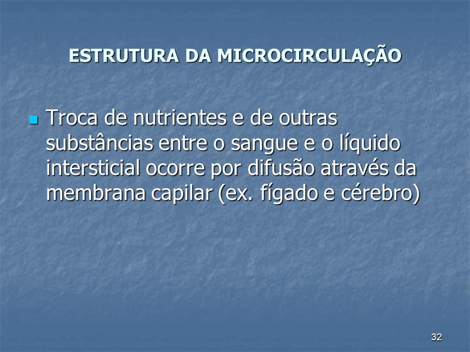 ESTRUTURA DA MICROCIRCULAÇÃO