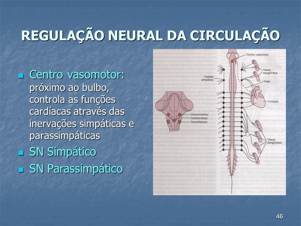 REGULAÇÃO NEURAL DA CIRCULAÇÃO