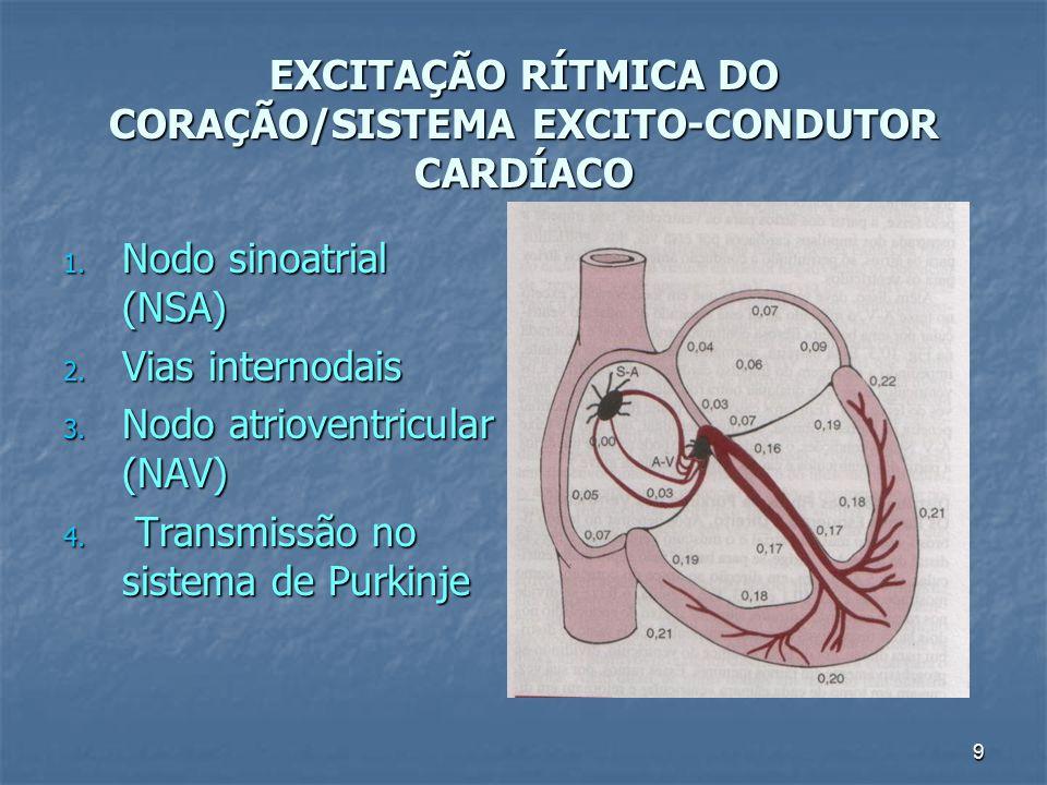 EXCITAÇÃO RÍTMICA DO CORAÇÃO/SISTEMA EXCITO-CONDUTOR CARDÍACO