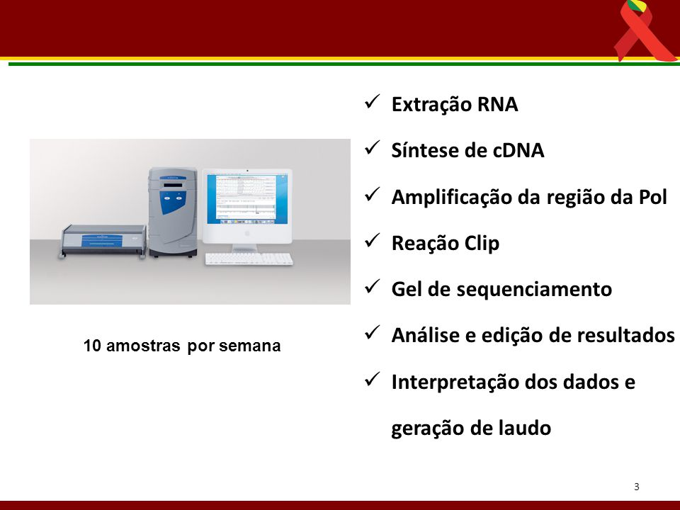 Amplificação da região da Pol Reação Clip Gel de sequenciamento