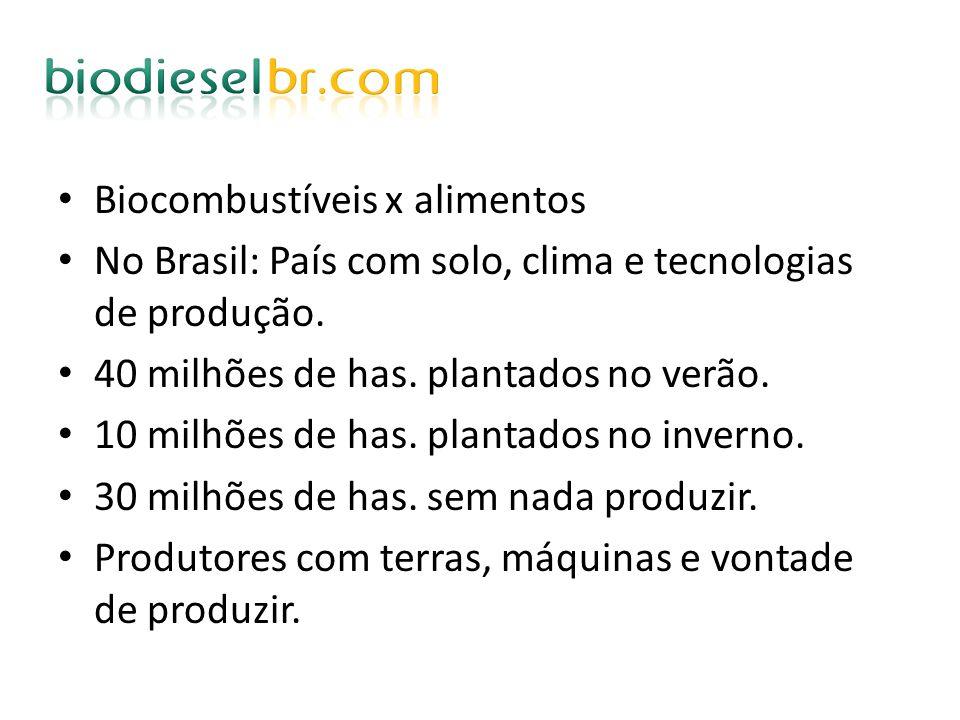 Biocombustíveis x alimentos