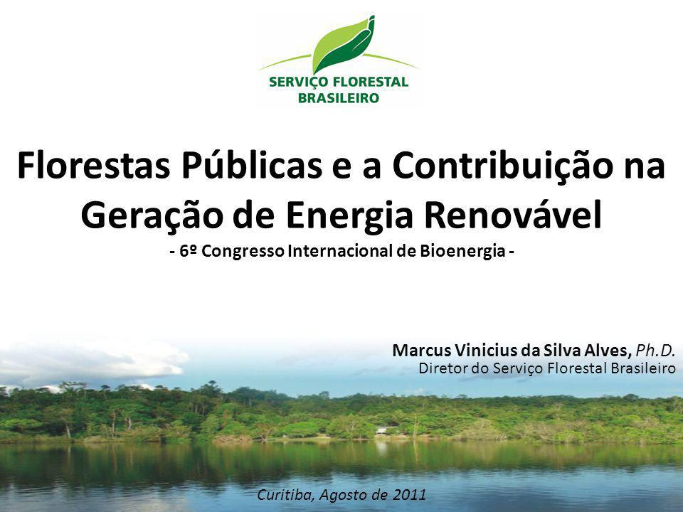 Florestas Públicas e a Contribuição na Geração de Energia Renovável - 6º Congresso Internacional de Bioenergia -