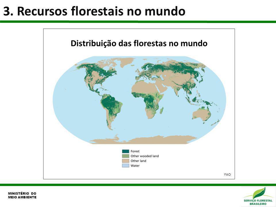 Distribuição das florestas no mundo