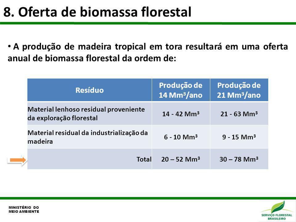 8. Oferta de biomassa florestal