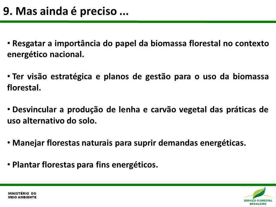 9. Mas ainda é preciso ... Resgatar a importância do papel da biomassa florestal no contexto energético nacional.