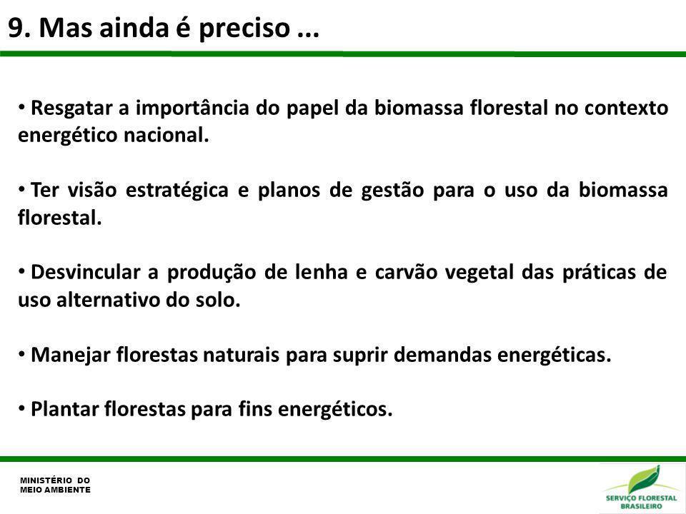 9. Mas ainda é preciso ...Resgatar a importância do papel da biomassa florestal no contexto energético nacional.