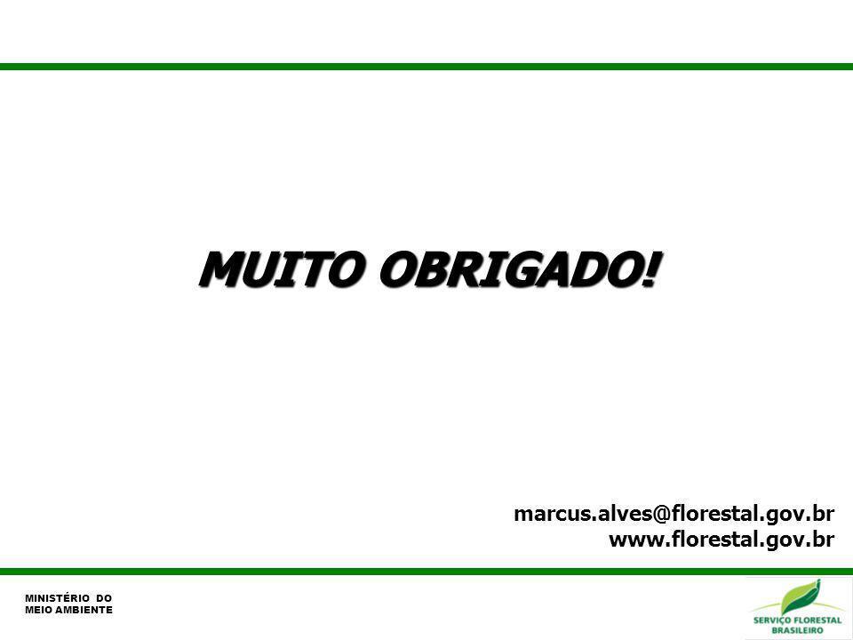 MUITO OBRIGADO! marcus.alves@florestal.gov.br www.florestal.gov.br