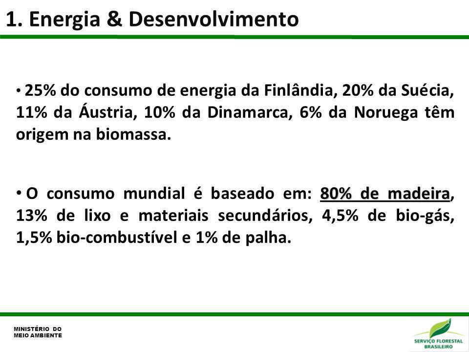1. Energia & Desenvolvimento